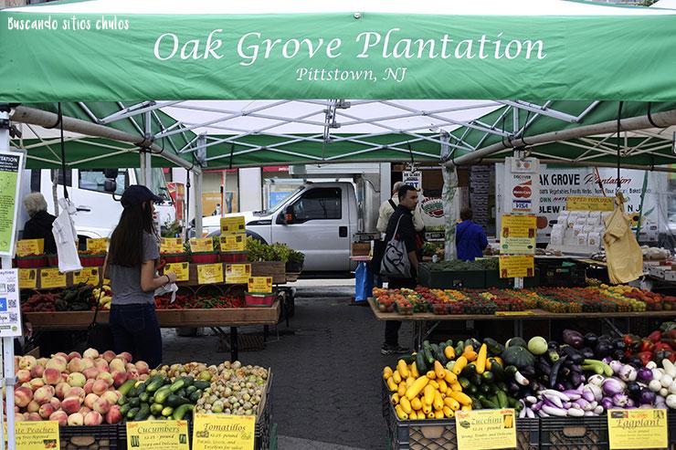 Vegetales de agricultura ecológica (Union Square Greenmarket)