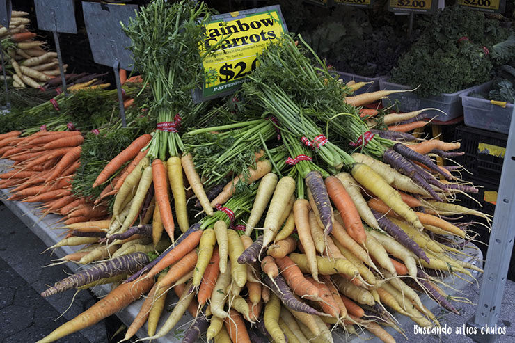Zanahorias de colores (Union Square Greenmarket)