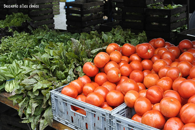 Tomates y lechugas (Union Square Greenmarket)