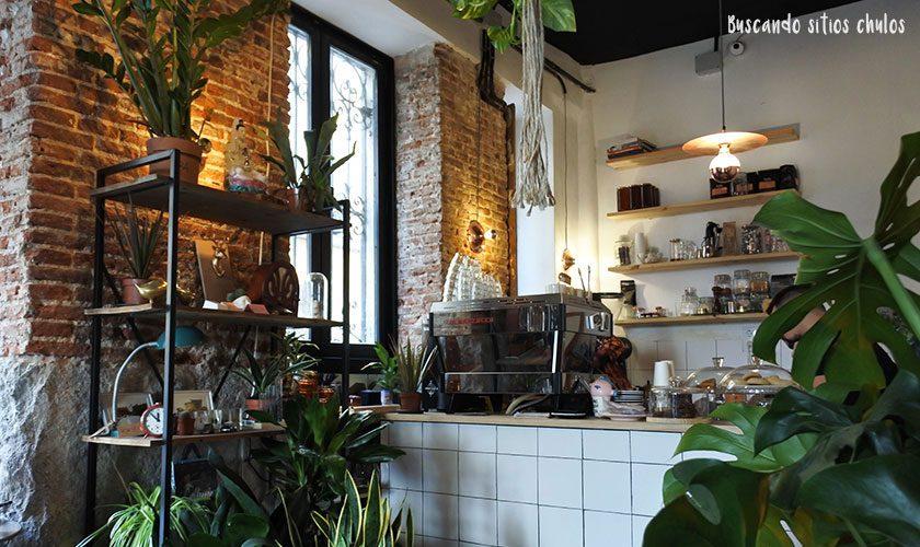 plantate-cafe-1