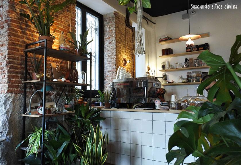 Plantaté Café en Madrid