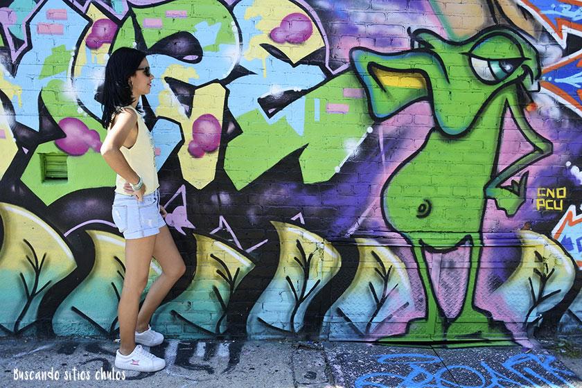 Ruta de graffitis por Bushwick