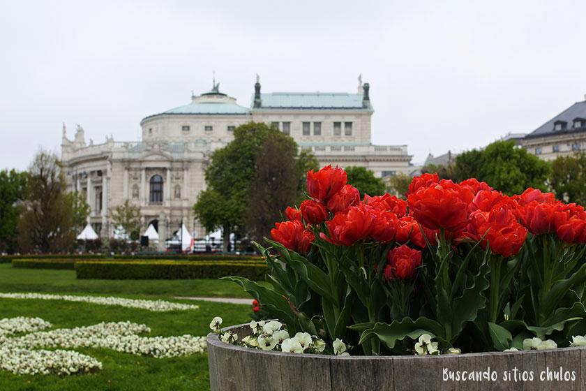 Qué ver y hacer en Viena