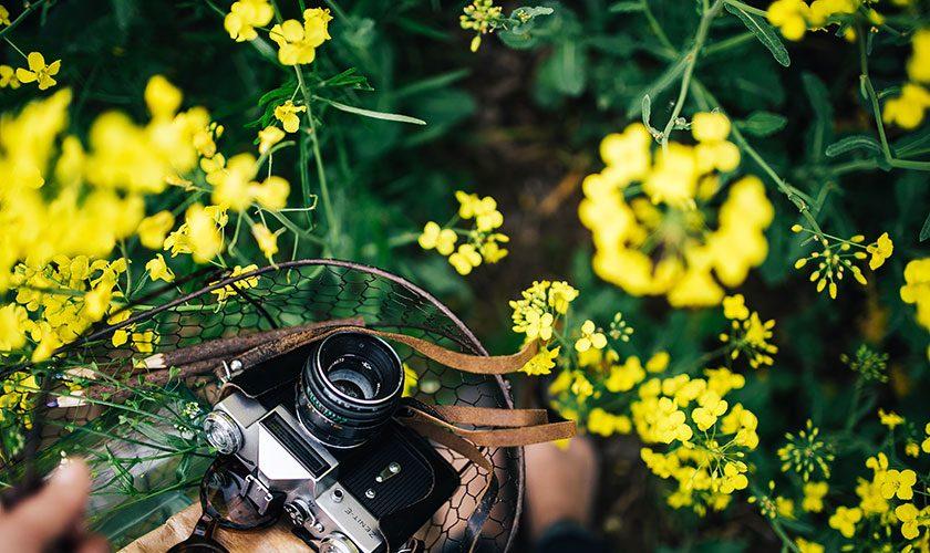 fotos-chulas-verano
