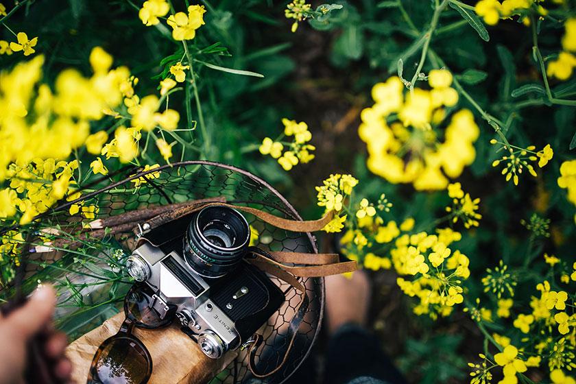 Fotos chulas en verano